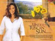 Trailer phim: Under The Tuscan Sun