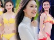7 thí sinh Hoa hậu Việt Nam đã xinh đẹp còn học giỏi