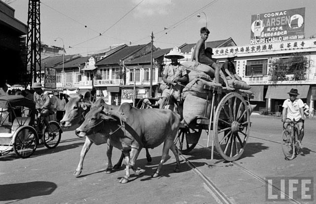Hội Tam Hoàng: Một thời vùng vẫy trên đất Việt - 2