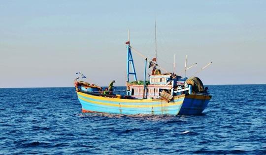 Tìm cách giải cứu 8 tàu cá bị nước ngoài bắt giữ - 1