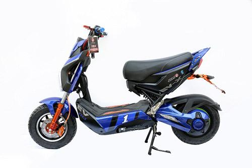 Sức hút xe điện made in Việt Nam - 3