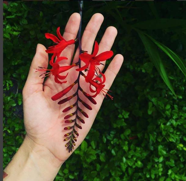 Ngỡ ngàng với hình xăm hoa lá đẹp tới mức nín thở - 3