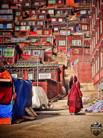 Ngắm Học viện Phật giáo lớn nhất thế giới ở Tây Tạng - 8