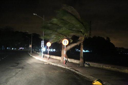 Bão số 1 đã suy yếu thành áp thấp nhiệt đới - 6