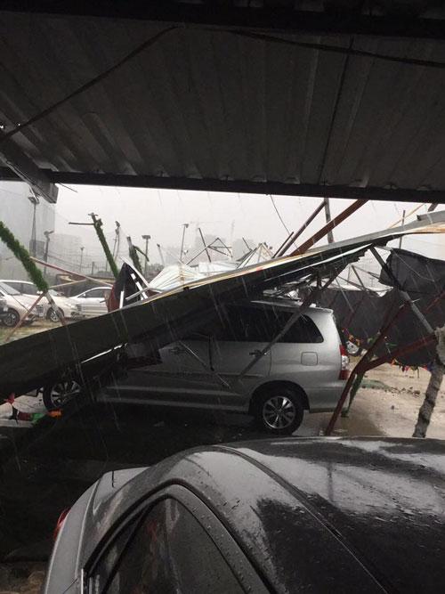 HN: Gió giật cực mạnh, cây đổ ngổn ngang do bão số 1 - 16