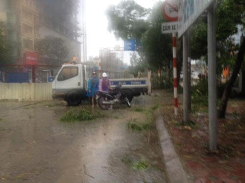 HN: Gió giật cực mạnh, cây đổ ngổn ngang do bão số 1 - 28