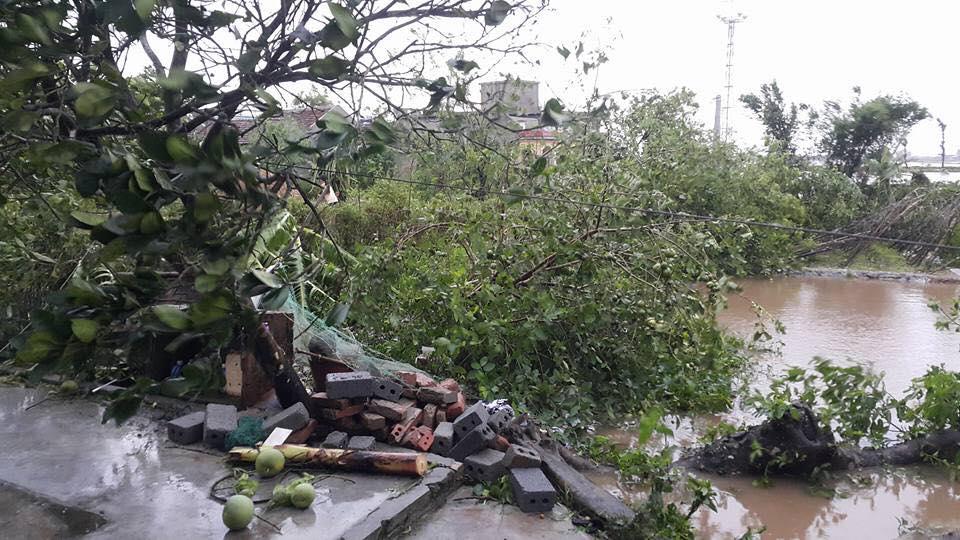 Bão số 1 càn quét, các tỉnh ven biển miền Bắc thiệt hại nặng nề - 2