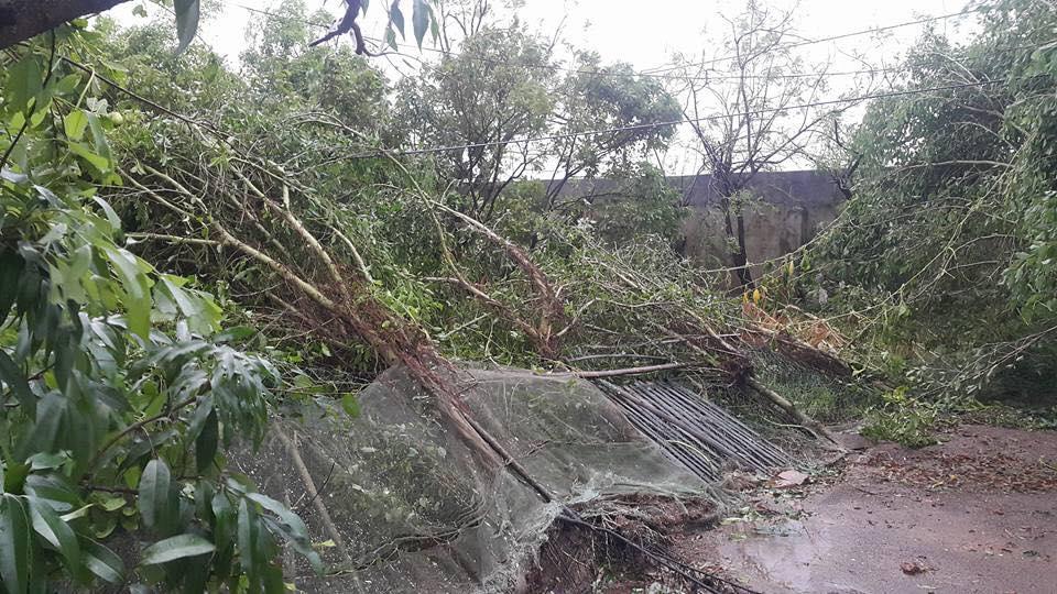 Bão số 1 càn quét, các tỉnh ven biển miền Bắc thiệt hại nặng nề - 4
