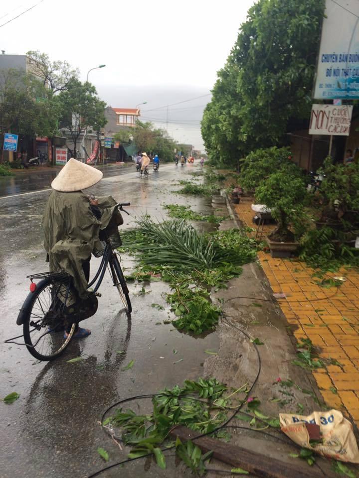 Bão số 1 càn quét, các tỉnh ven biển miền Bắc thiệt hại nặng nề - 13