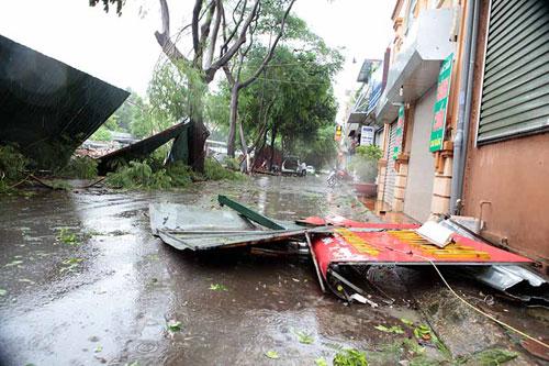 HN: Gió giật cực mạnh, cây đổ ngổn ngang do bão số 1 - 6
