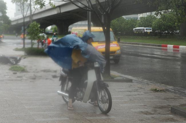 Chùm ảnh: Người Hà Nội vật vã chống chọi bão số 1 - 3