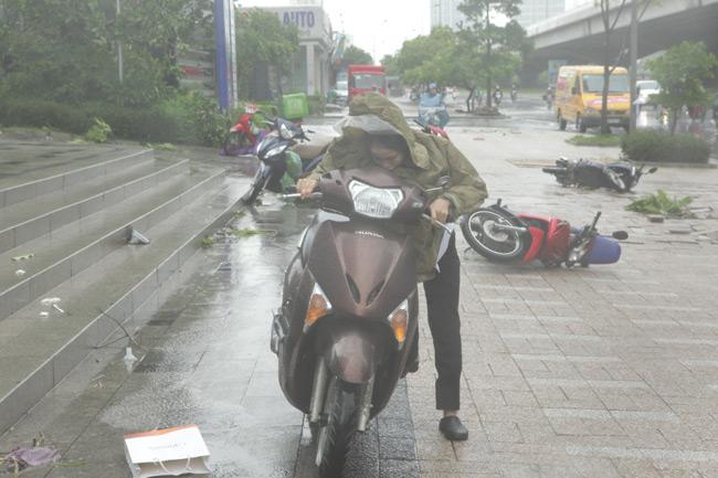 Chùm ảnh: Người Hà Nội vật vã chống chọi bão số 1 - 1