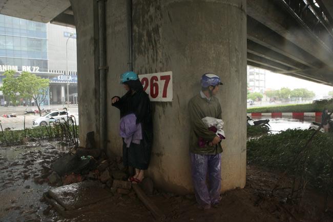 Chùm ảnh: Người Hà Nội vật vã chống chọi bão số 1 - 12