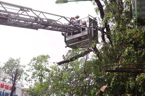 Những người căng mình làm việc trong mưa bão số 1 - 5