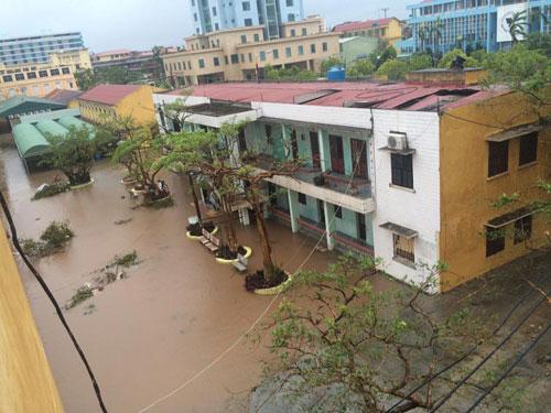Bão số 1 càn quét, các tỉnh ven biển miền Bắc thiệt hại nặng nề - 17