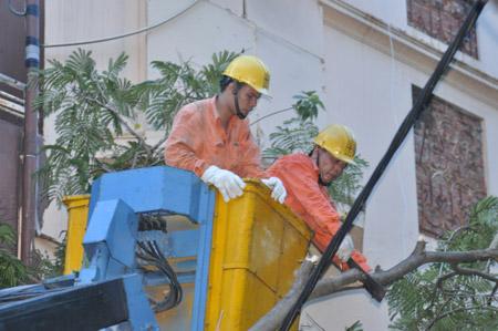 EVN cảnh báo nguy hiểm do bão số 1 gây tổn hại lưới điện - 1