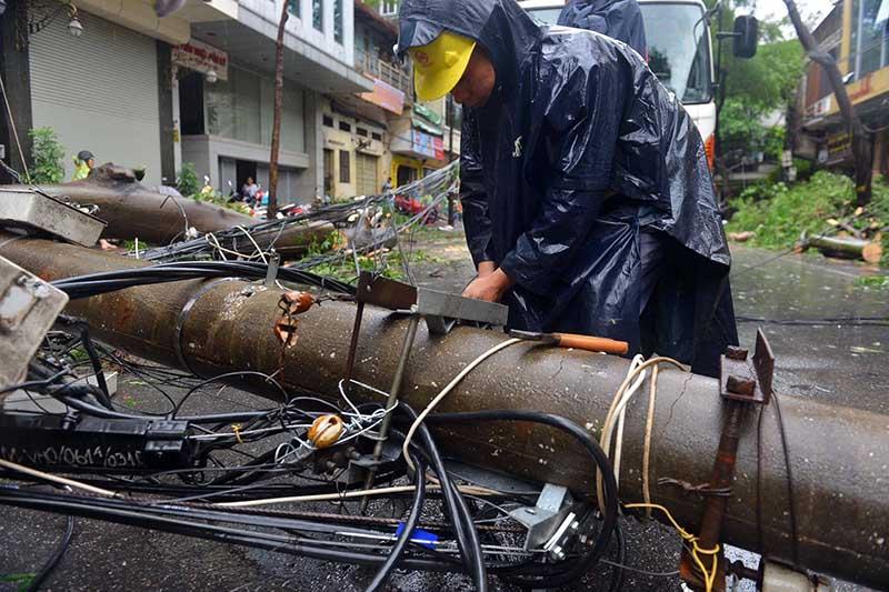 Ảnh: Hà Nội tơi tả sau bão Mirinae - 9