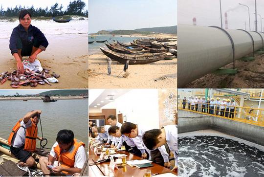 Chính phủ báo cáo QH vụ cá chết bất thường hàng loạt - 1