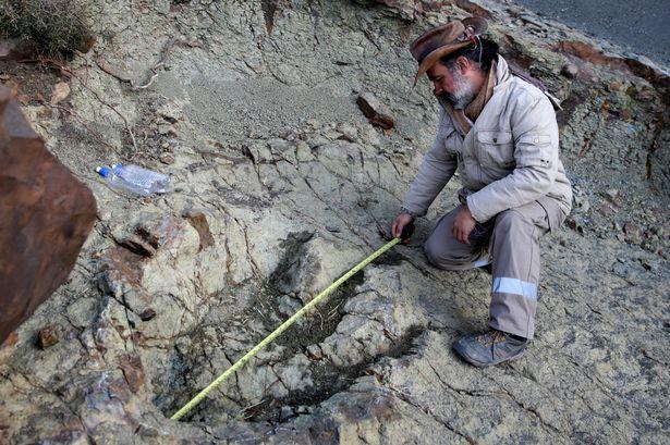 Phát hiện dấu chân khủng long 80 triệu năm ở Bolivia - 3