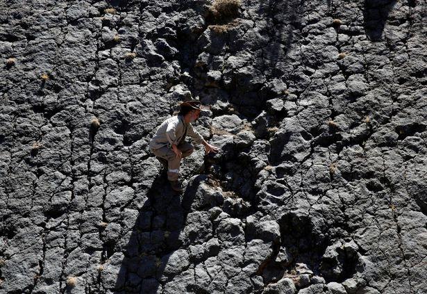 Phát hiện dấu chân khủng long 80 triệu năm ở Bolivia - 5