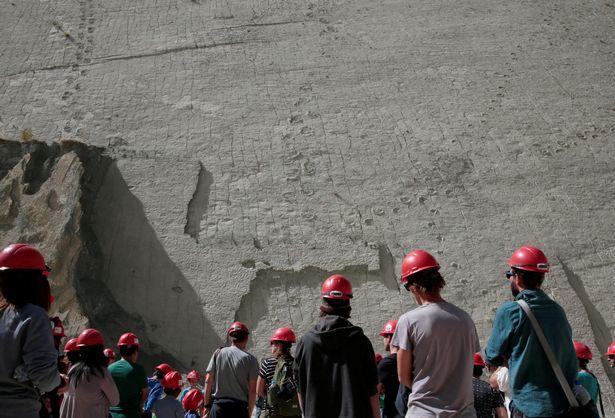 Phát hiện dấu chân khủng long 80 triệu năm ở Bolivia - 6