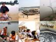 Chính phủ báo cáo QH vụ cá chết bất thường hàng loạt