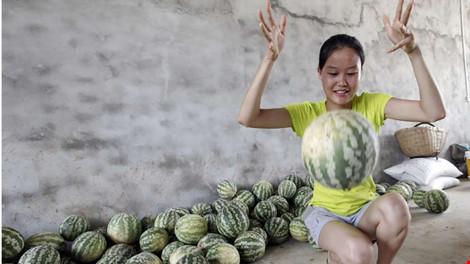 Kỳ lạ: Dưa hấu Trung Quốc nảy như bóng cao su khi ném - 1