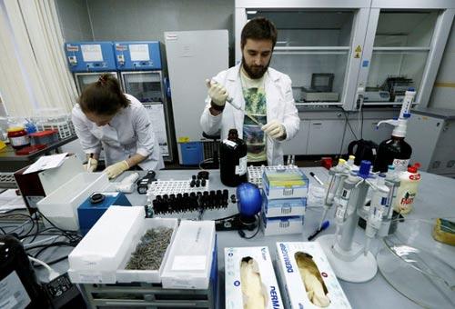 """""""Bóng ma"""" doping Nga: Bí ẩn phòng xét nghiệm Moscow - 1"""