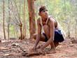 Chàng trai Ấn Độ thích sống như khỉ trong rừng