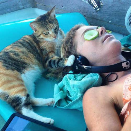 Bài học đắt giá của cô gái du lịch thế giới cùng mèo cưng - 5