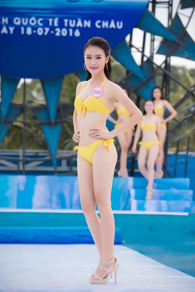 Người đẹp thành tích khủng tại Hoa hậu VN không sợ thị phi - 14