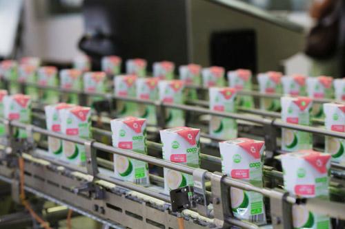Sản phẩm nước dừa đóng hộp đầu tiên tại Việt Nam - 3