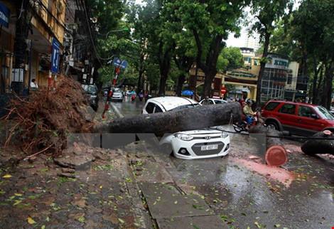 Thủ tướng ra công điện ứng phó với cơn bão số 2 - 1