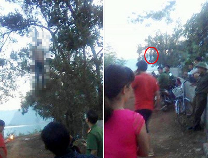 Phát hiện thi thể nam thanh niên treo lơ lửng trên cây - 1