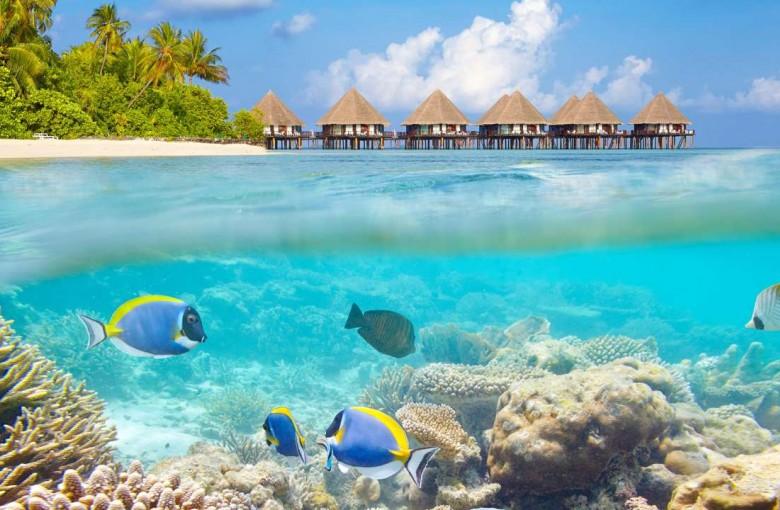 Bất ngờ với hai mặt đối lập của thiên đường Maldives - 1