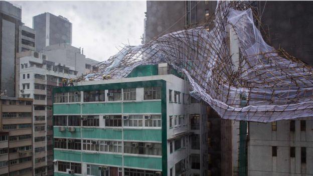 Cây đổ, nhà tốc mái khi bão số 2 càn quét Trung Quốc - 3