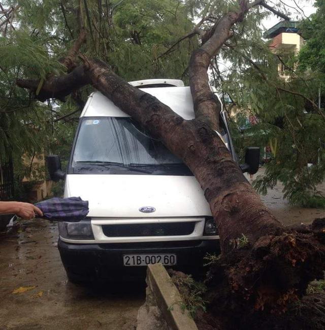 Dông lốc khủng khiếp ở Yên Bái, nhiều nhà bị thổi tung - 7