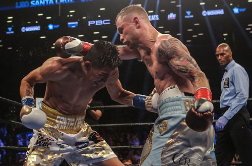 """Boxing: """"Kẻ hủy diệt"""" hạng gà hạ VUA hạng lông - 1"""
