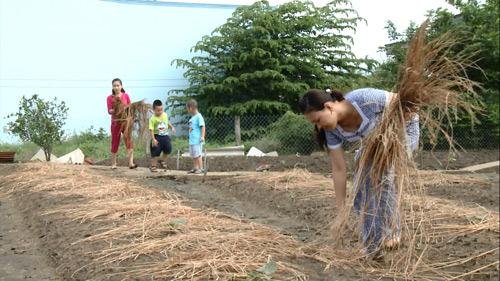 MC Xuân Hiếu, Ngọc Hương cùng con về quê làm nông dân - 4