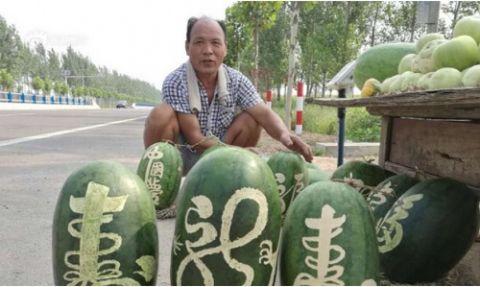 Bất ngờ bán 3000 kg dưa hấu trong vòng 11 ngày - 1