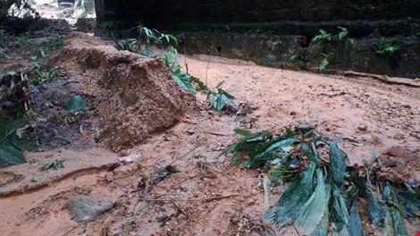 Hàng ngàn m3 bùn đất ập xuống khu dân cư - 1