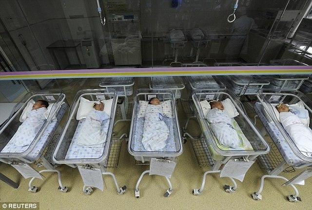 TQ sẽ tạo siêu nhân biến đổi gene đầu tiên thế giới? - 1