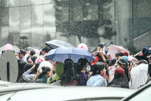 Fan Việt đội mưa đón cô gái xinh đẹp nhất nhóm 2NE1 - 4