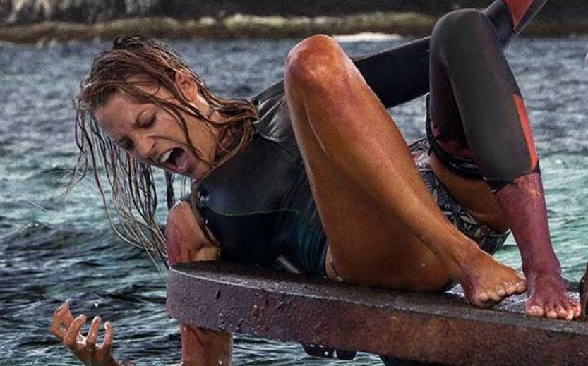 The Shallows: Phim về cá mập ăn thịt người hot nhất 2016 - 3