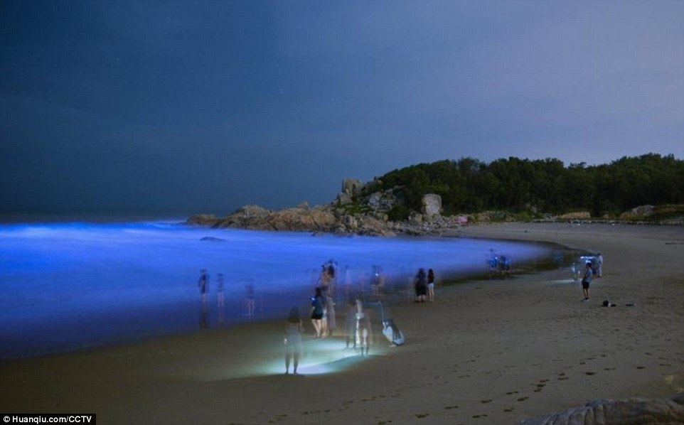 Bãi biển phát sáng xanh huyền bí trong đêm ở TQ - 1