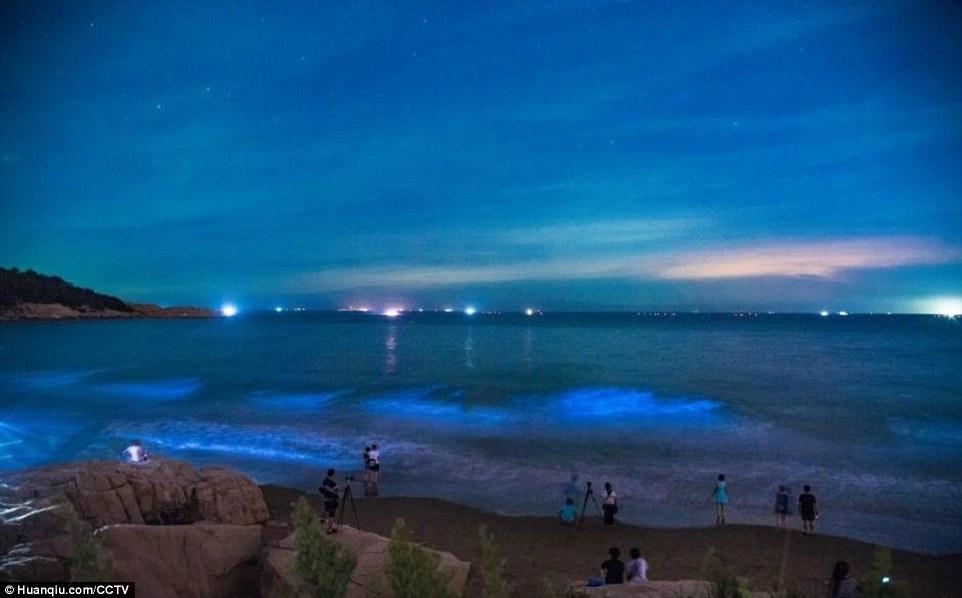 Bãi biển phát sáng xanh huyền bí trong đêm ở TQ - 2