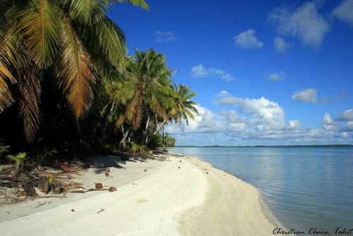 Khám phá đảo hình nhẫn giữa Thái Bình Dương - 9