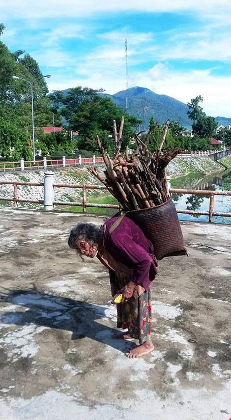Cụ bà 90 tuổi lưng còng, tóc bạc vẫn trồng ngô tỉa bắp - 1