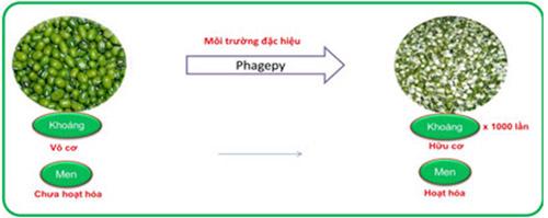 VHN Bio – Ứng dụng công nghệ cao trong sản xuất dược phẩm - 2