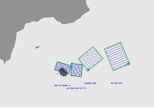 2 tàu đâm nhau, 11 thuyền viên rơi xuống biển Vũng Tàu - 2